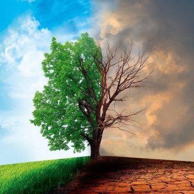 Visualisierung Dürreperioden